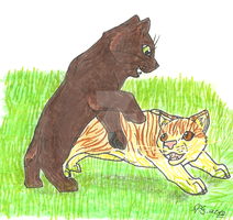 Warrior Cats- Falling Souls Part 5 by spiritdaughter
