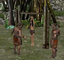 Anja suspended and whipped by dim1988