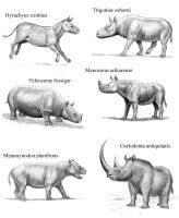 Extinct Rhinos 1 by WillemSvdMerwe