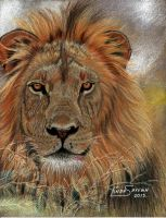 It's a Lion... by Artsy50