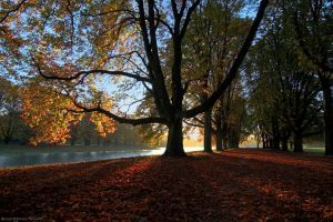 autumn by icarus-ica