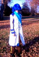 Kaito Cosplay by stormilove