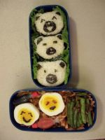 my first bento by susanlin