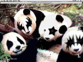 my new desktop... KISS pandas by Coolcat607