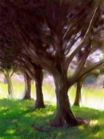 Spring trees by FaintVerse