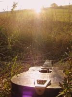while my guitar gently weeps by ValeriaKrivets