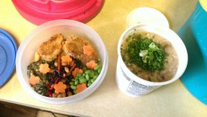 Tupperware Bento by Ellendar