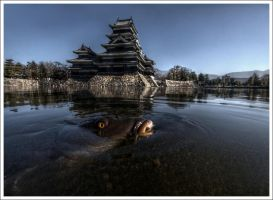 Matsumoto's Eye by Graphylight