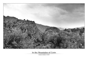 In the Mountains of Crete 1 by denise-g