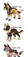 3 Pups to =XKSilver by MichelsAdoptions