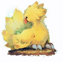 chocobo by NoneNess