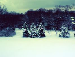 winter by ether