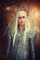 Thranduil by LilifIlane