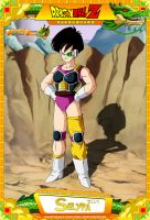 Dragon Ball Z - Selypa by DBCProject