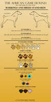 AGH - Breed Sheet 2 by KaurauTheFox