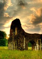 Waverley Abbey Revisited II by kevinbishop