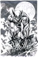 wolvie reinked by gammaknight