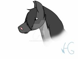Blue roan doodle by Wolfhorsegirly