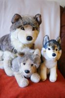 New plush 2013 by Huskyplush