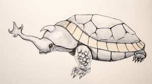 Beatle - Turtle by MaartenKlein