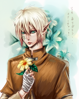 For_squchan_Aiden Faolan by Armelia