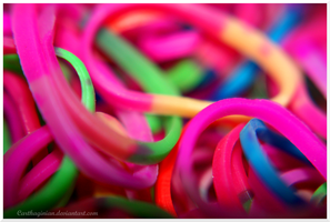 Macro Rubber Bands 2 by Carthaginian