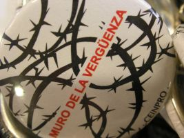 barbed wire plate by wind-hime-kaze