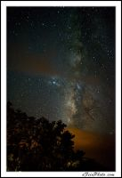Milky way meets tree by aFeinPhoto-com