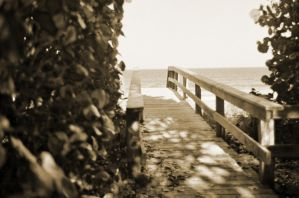 DOwn To The Beach by rocker409