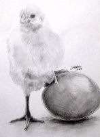 Overprotective baby chick by Swicca