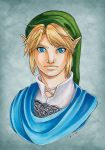 Hyrule Warriors Link by Ranefea