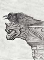 A Ravens Perch by PhilipHarvey
