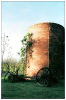 Country Life by exoart