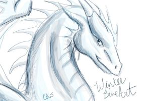 WinterBlueArt Sketch by harimauputeh