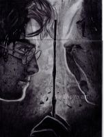 Harry Potter and the Deathly Hallows Part one by Auropucem