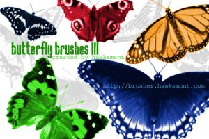 Butterfly Brushes III by hawksmont