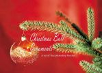 Christmas Balls: PS Brushes by fiftyfivepixels
