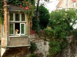 Bruges Doggy by nikisiou
