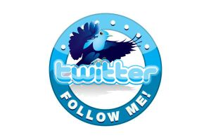 Twitter 'Follow Me' Logo by WinfrithGraphics