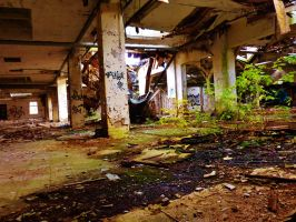 abandoned furniture plants IX by tussy1483