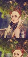 Thranduil Cosplay. by WhippedCreamCake