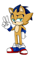 Sally X Sonic Fan Child 2 Male .:Revamp:. by VeggieMadness