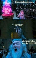 Dumbledore mom by rumper1