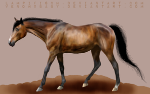 A brown nameless horse by lampifisch