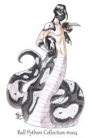 004 - Ball Python Collection by FantasyToArt