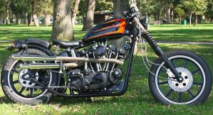 1979 Sportster by StallionDesigns