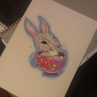 Teacup Rabbit by jjaade