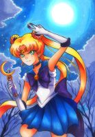 Sailor Z(oisite) by Jack-a-Lynn