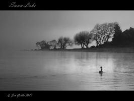 Swan Lake by JonGoldie