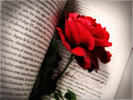 Literary Romance by sykes-one